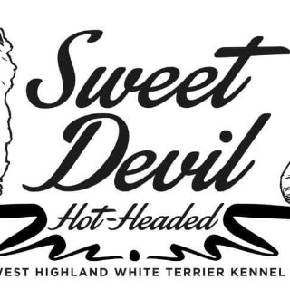 Sweet Devil hot-headed