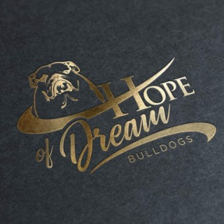 HOPE OF DREAM