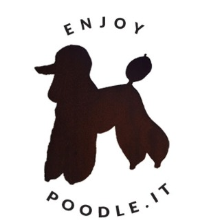 Enjoy Poodle