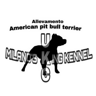 Milano's King kennel