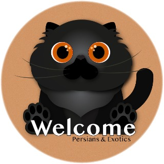 Welcome Cattery