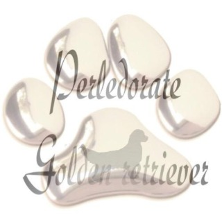 Perledorate golden Retriever