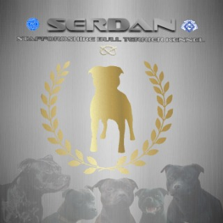 Serdan Kennel