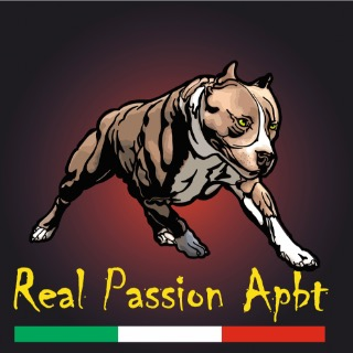 Real Passion Apbt