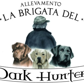 La Brigata del Dark Hunter