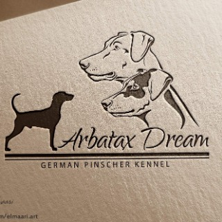 Arbataxdream-germanpinscher