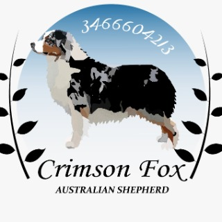 Crimsonfox kennel