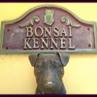 Bonsai Kennel