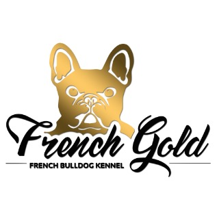 FRENCH GOLD - ENCI - FCI