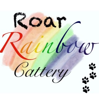 Roar Rainbow Cattery