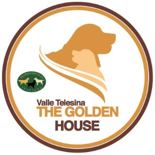 The Golden House Valle Telesina