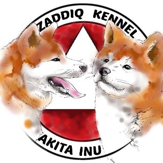 ZADDIQ KENNEL